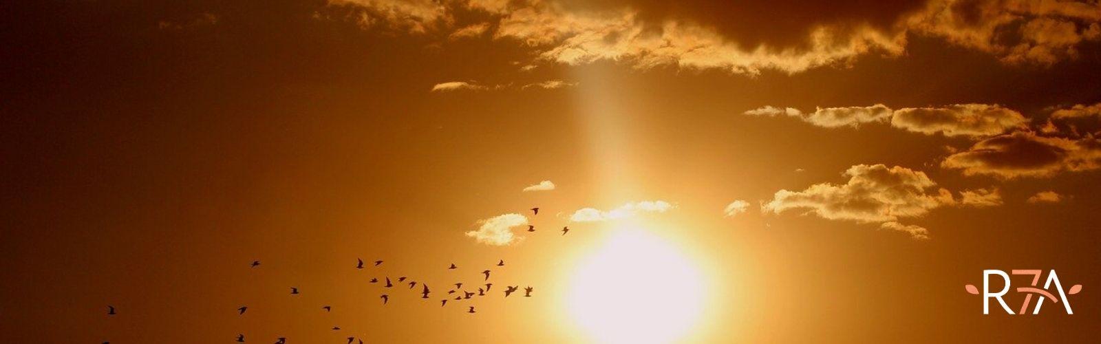 Il sole-salute-benessere-rigenera life