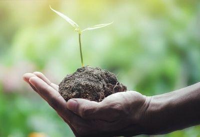 salvare-il-pianeta-salute-benessere-rigenera-life.