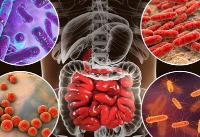 salute-benessere-rigenera life-microbiota